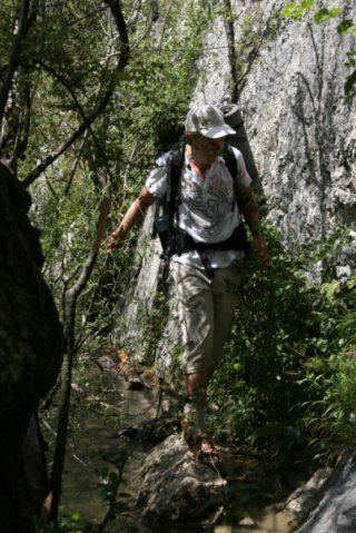 крымские джунгли